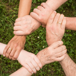 Formation Groupe efficace et agréable - Module 1 : Bases et intelligence collective