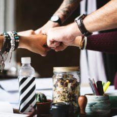 Le Réseau Transition recrute un·e coordinateur·rice de projet, facilitateur·rice et coach de groupe citoyens